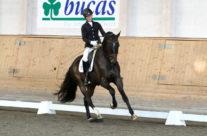 Breeders & Sportchampionatet 2012