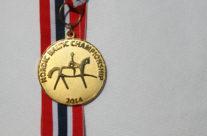 Nordisk Baltisk Mästare Individuellt